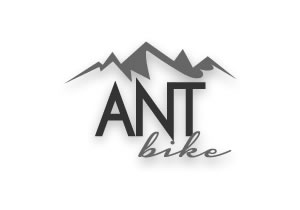Ant bike Group